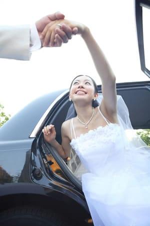 Wedding Limo, Party Bus - Metro Detroit, MI